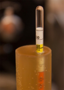 densimetro